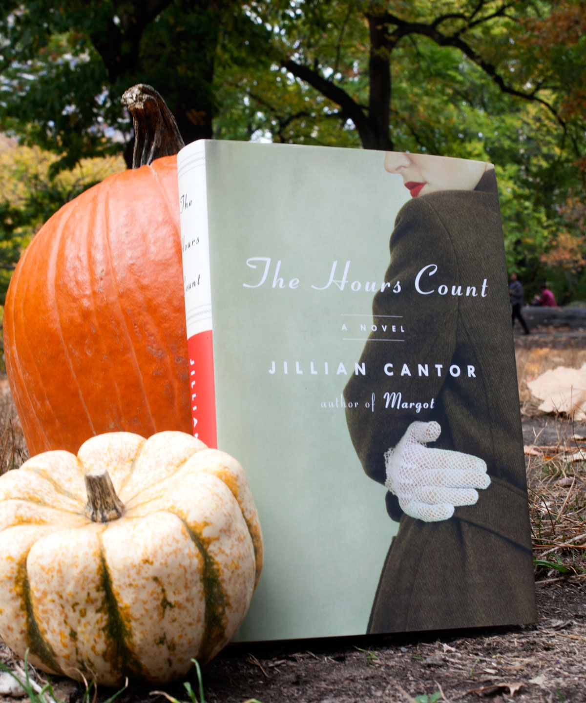 Jillian Cantor The Hours Count