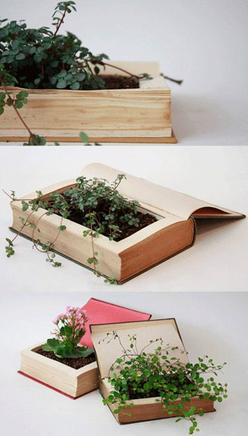 planter made out of book