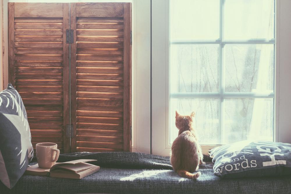 window seat books