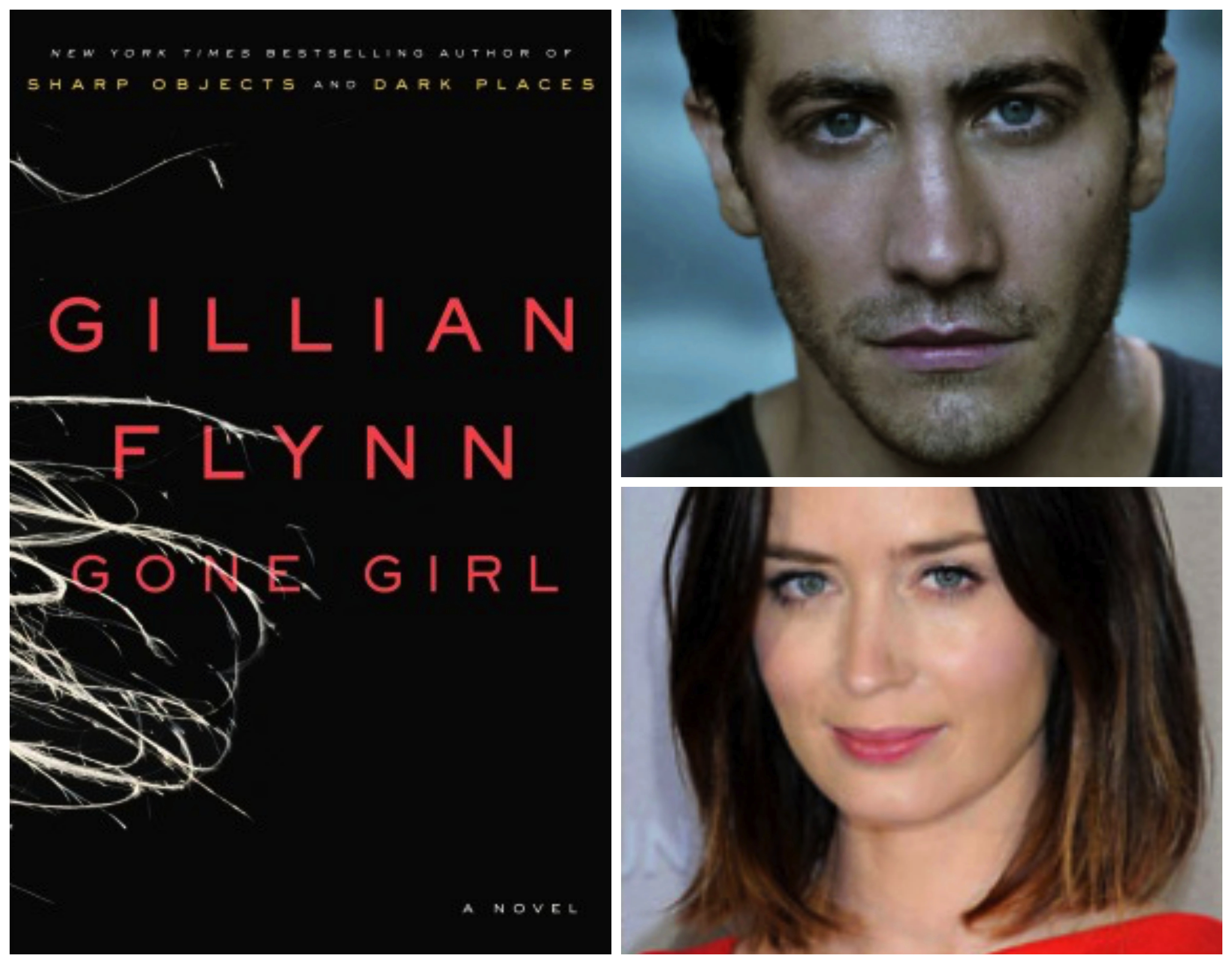 Casting GONE GIRL by Gillian Flynn