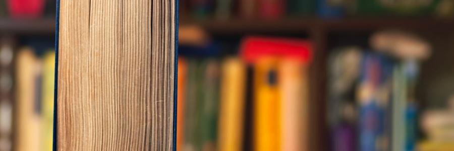 nonfiction reads fiction