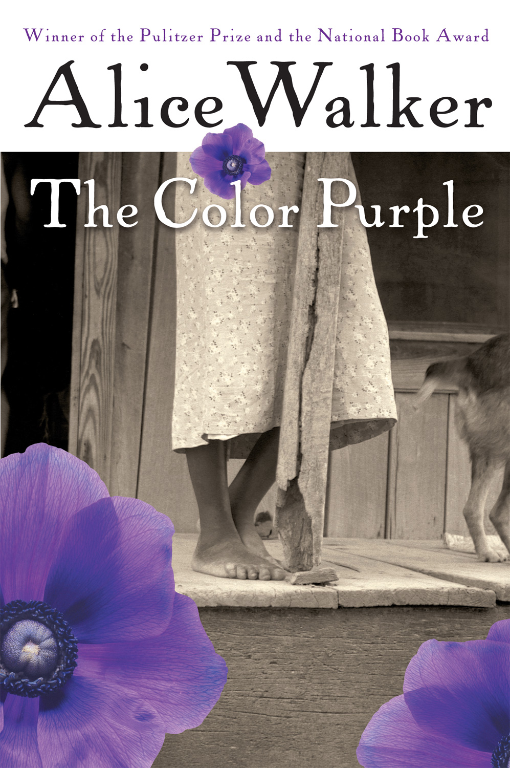 an analysis of religion and spirituality in the colour purple by alice walker Life struggles and themes in alice walker's the color purple [tags: alice walker, literary analysis purple alice walkers 'the colour purple' was.