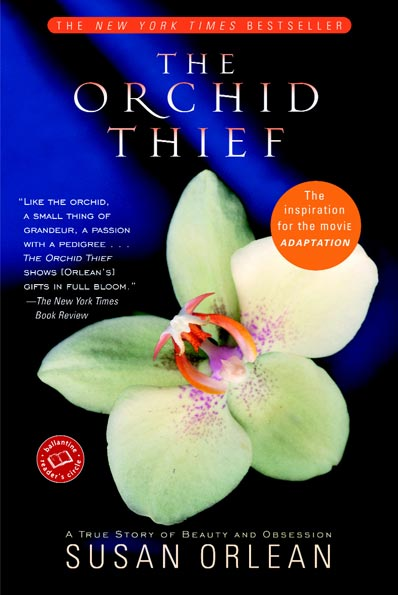 orchid-thief