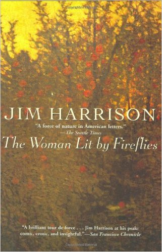The cover of the book The Woman Lit by Fireflies
