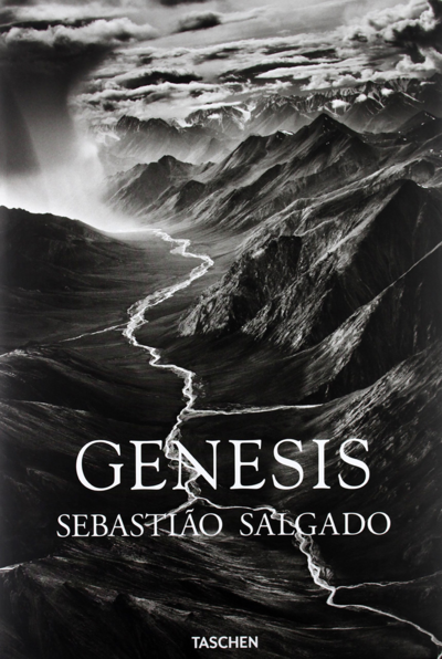 The cover of the book GENESIS