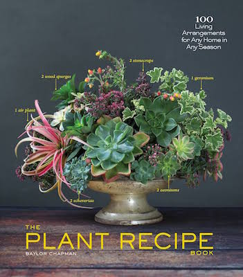 The cover of the book The Plant Recipe Book