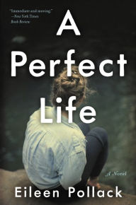 A Perfect Life by Eileen Pollack