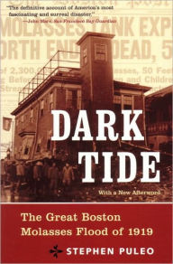 The Dark Tide: The Great Molasses Flood of 1919 by Stephen Puleo