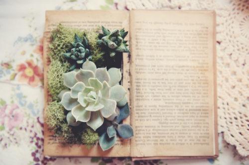 The Best Book Themed Weddings Read It Forward