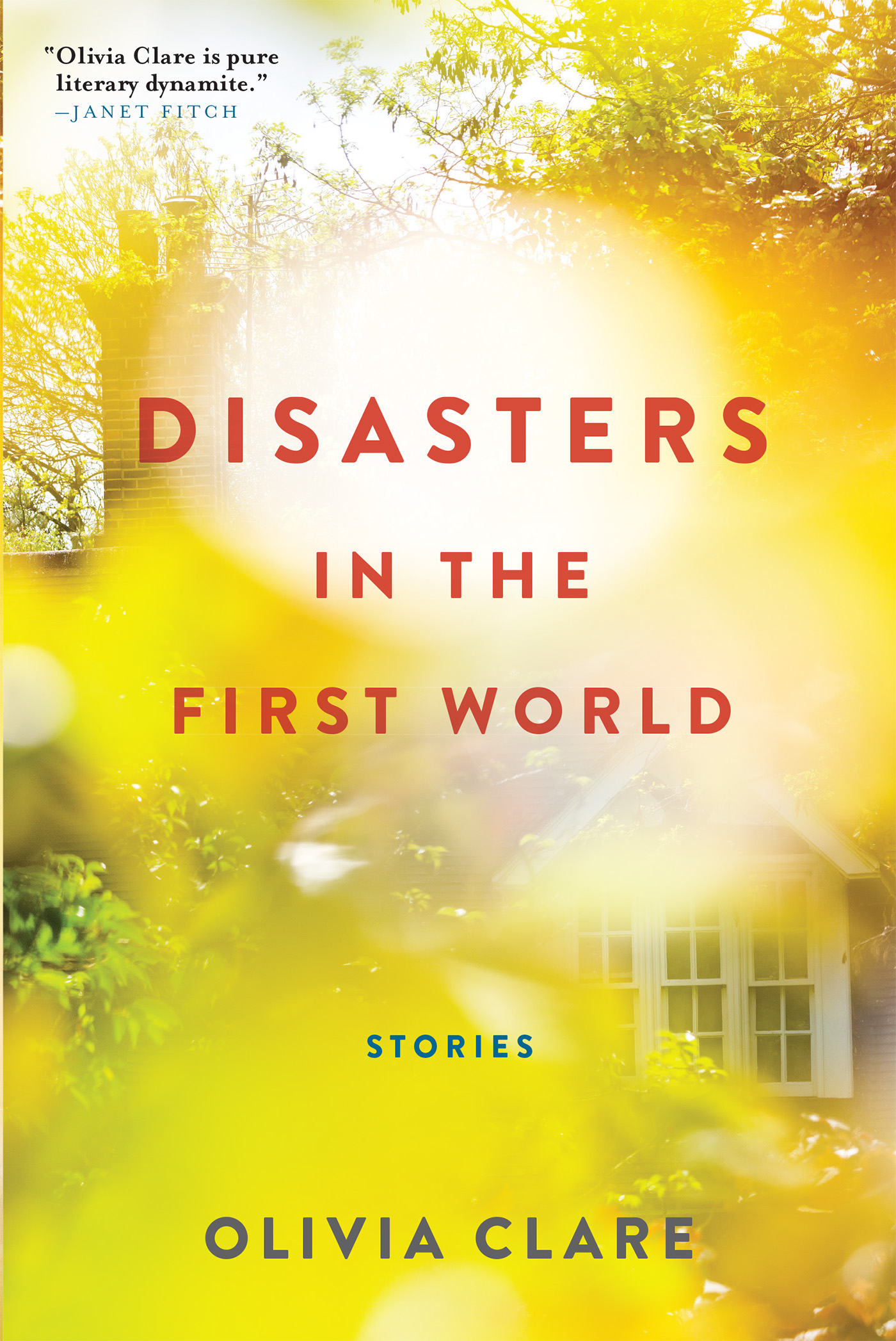 Disasters in the First World by Olivia Clare