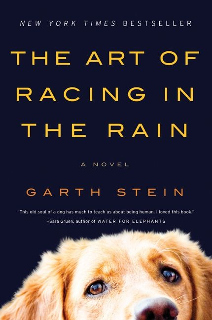 The cover of the book The Art of Racing in the Rain