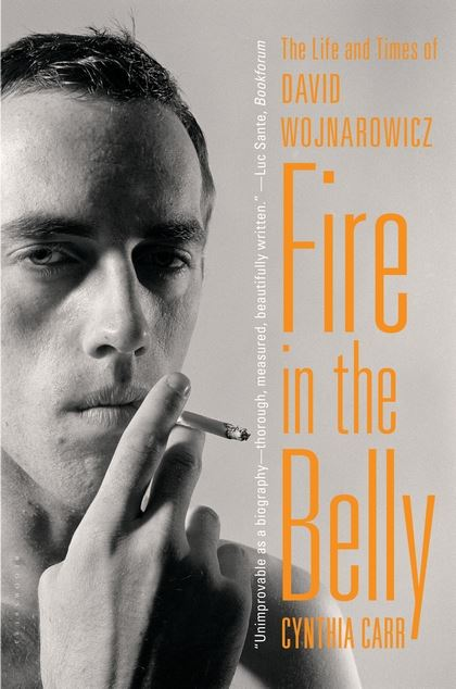 Fire in the Belly: The Life and Times of David Wojnarowicz  by Cynthia Carr