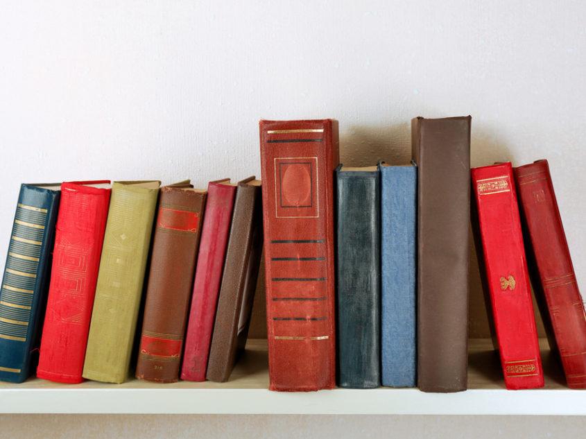 Minimalist-Bookshelf