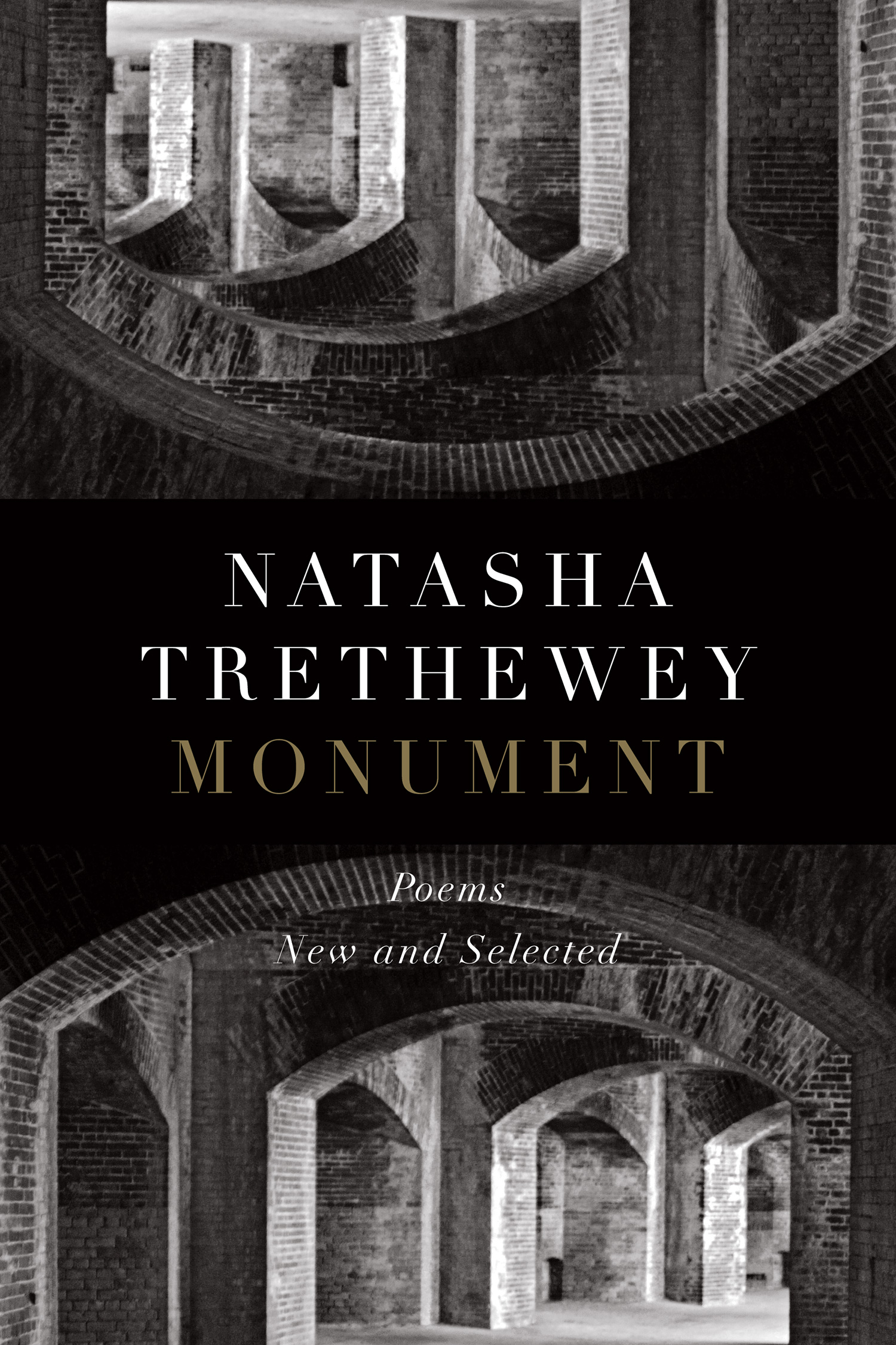 The cover of the book Monument