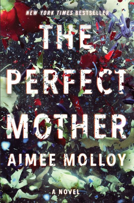 The cover of the book The Perfect Mother