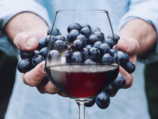 natural wines